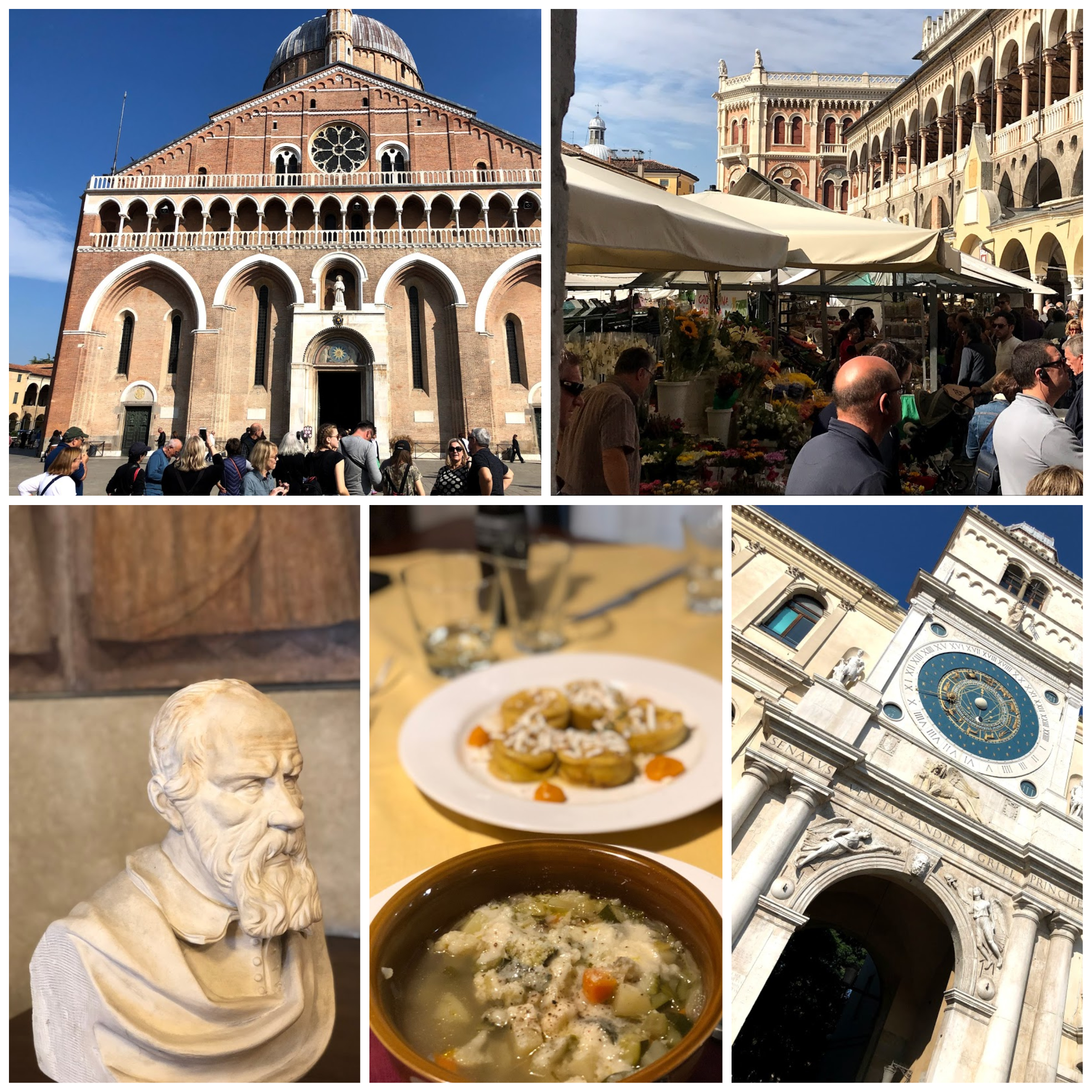 What to Do, Where to Eat, and What to See in Padua Italy